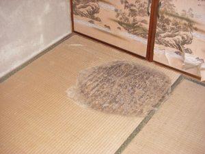 畳への被害