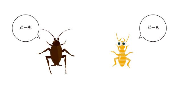 しろありはゴキブリの仲間