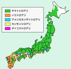 長崎は特にシロアリが多い県です
