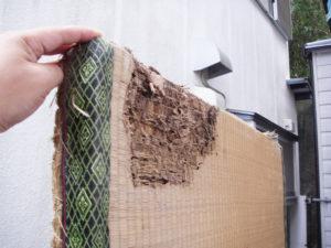シロアリに食べられた畳