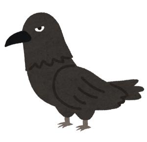 カラスは鳩の天敵